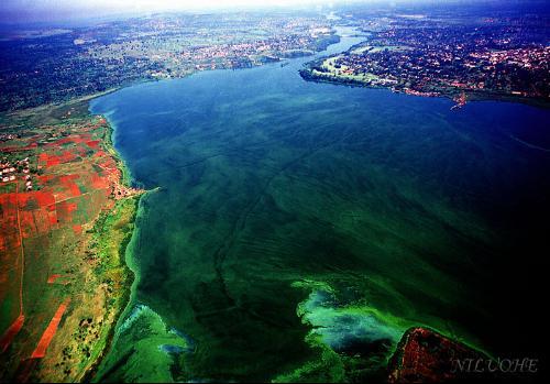 世界第一长河:尼罗河