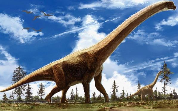 世界上最大的恐龙是什么龙