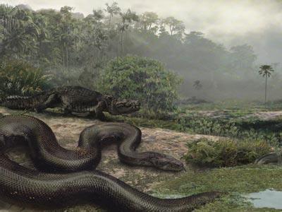 世界上最大的蛇