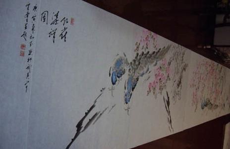 世界上最长的孔雀画册