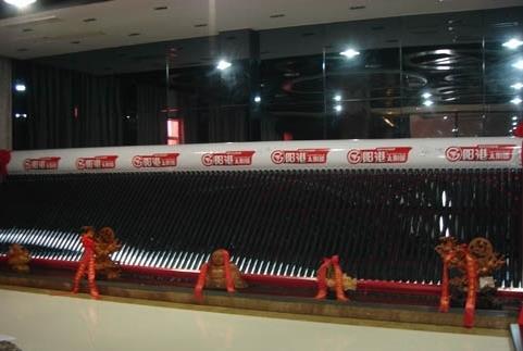 世界上最大的热水器