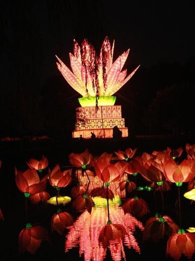 世界上最大的造型灯