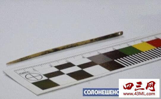 世界上最古老的针,用鸟骨制成(距今5000年)