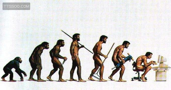 美国猴子案件