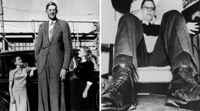 世界上最高的十大男人