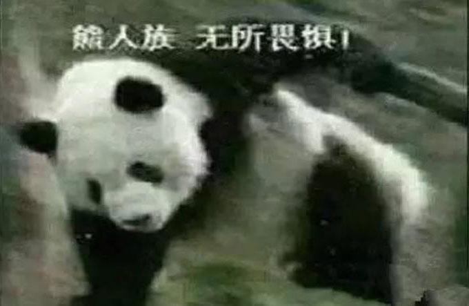 熊猫人永不为奴第三张图