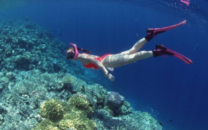 普通人潜水最深多少米