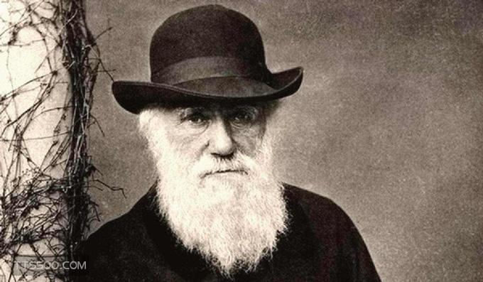 达尔文发明了什么