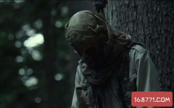 日本自杀森林青木原树海,进去的人都会自杀死亡