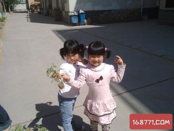 14岁女学生李欣玥在楼身亡,只因抗议学校不愿剪短发