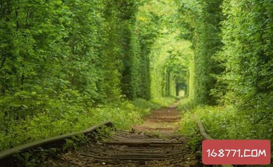 南京最清新铁路爱情隧道,游客围观导致逼停火车