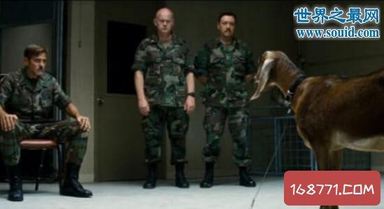 美国通灵部队,能充当阴阳间谍(与死人对话)