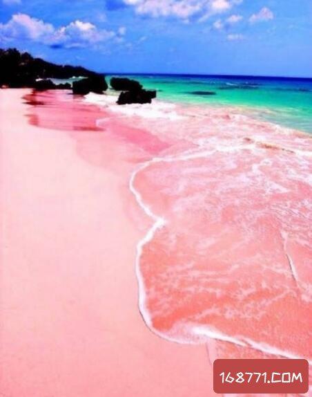 塞内加尔神奇的玫瑰湖,湖水竟能变色(淡绿变粉红)