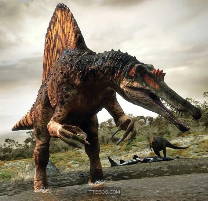 什么恐龙能打过棘龙