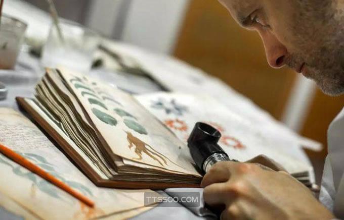 伏尼契手稿外星人的书