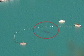 喀纳斯湖水怪真相揭秘,喀纳斯湖水怪真的存在吗?