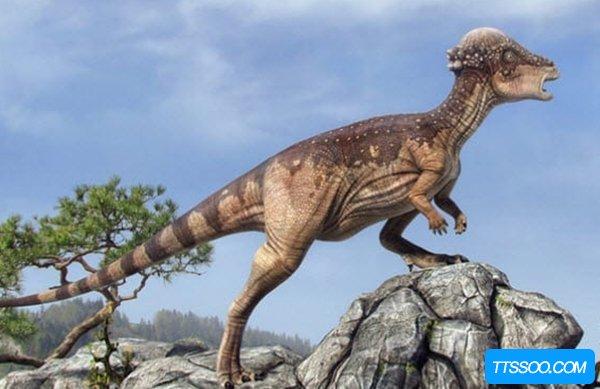 世界上最可怕的恐龙是什么恐龙?盘点全球十大最恐怖的恐龙
