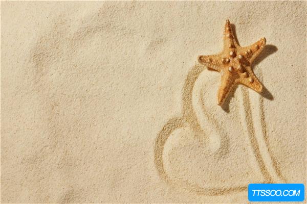 海星的祖先是什么?