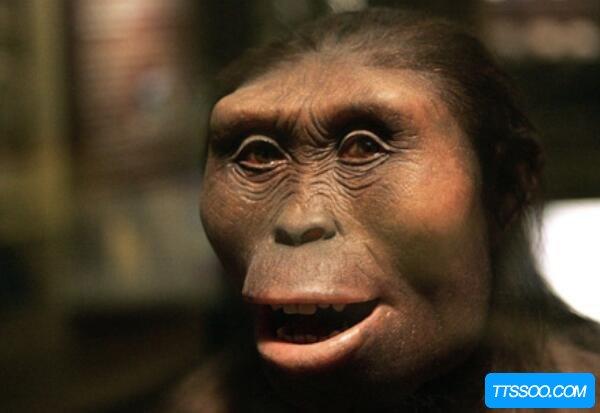 地球上第一个人是谁,20岁的女猿人露西(距今320万年)