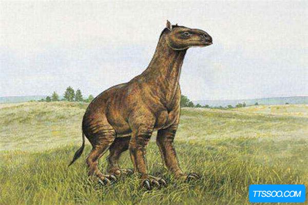 史前始祖马身形和鹿相似 50年前退化为三趾