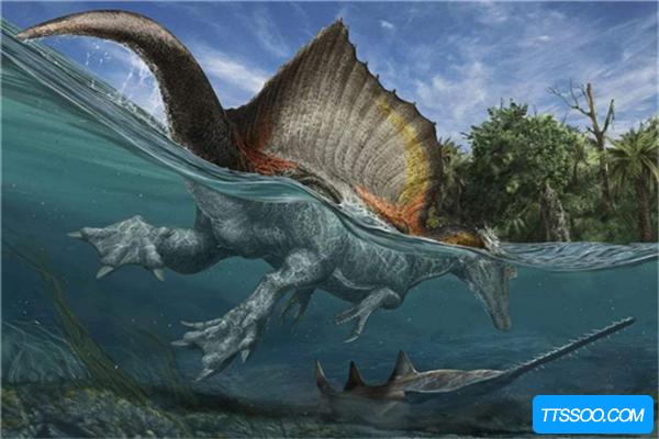 恐龙的祖先是谁?