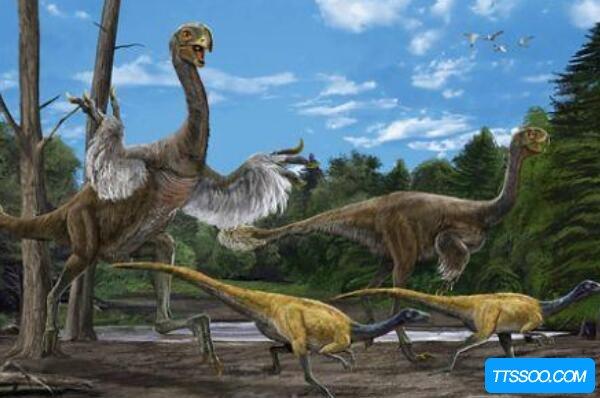 恐龙的演变过程图,槽齿类爬行动-恐龙-鸟类(灭绝加速人类进化)